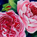 Roses Oil painting Flowers