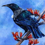 New Zealand Native Tui Painting